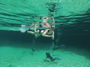 cenote tour tulum authentictourstulum.com
